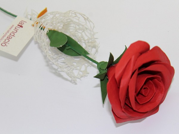 On St. George's Day, our roses arrive at the Primary Care Centers