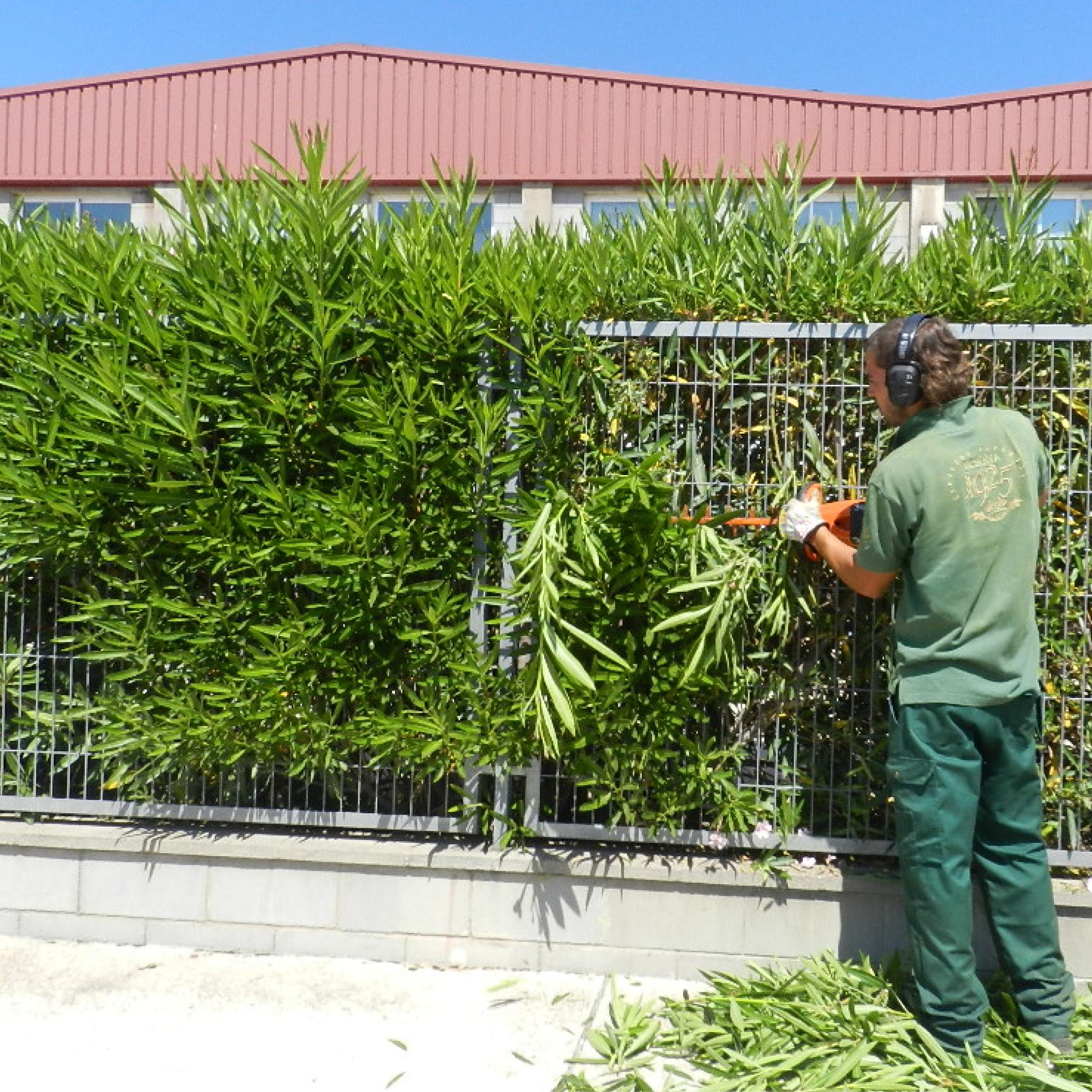 Inserci socio laboral grup fundaci ramon noguera for Jardineria la noguera