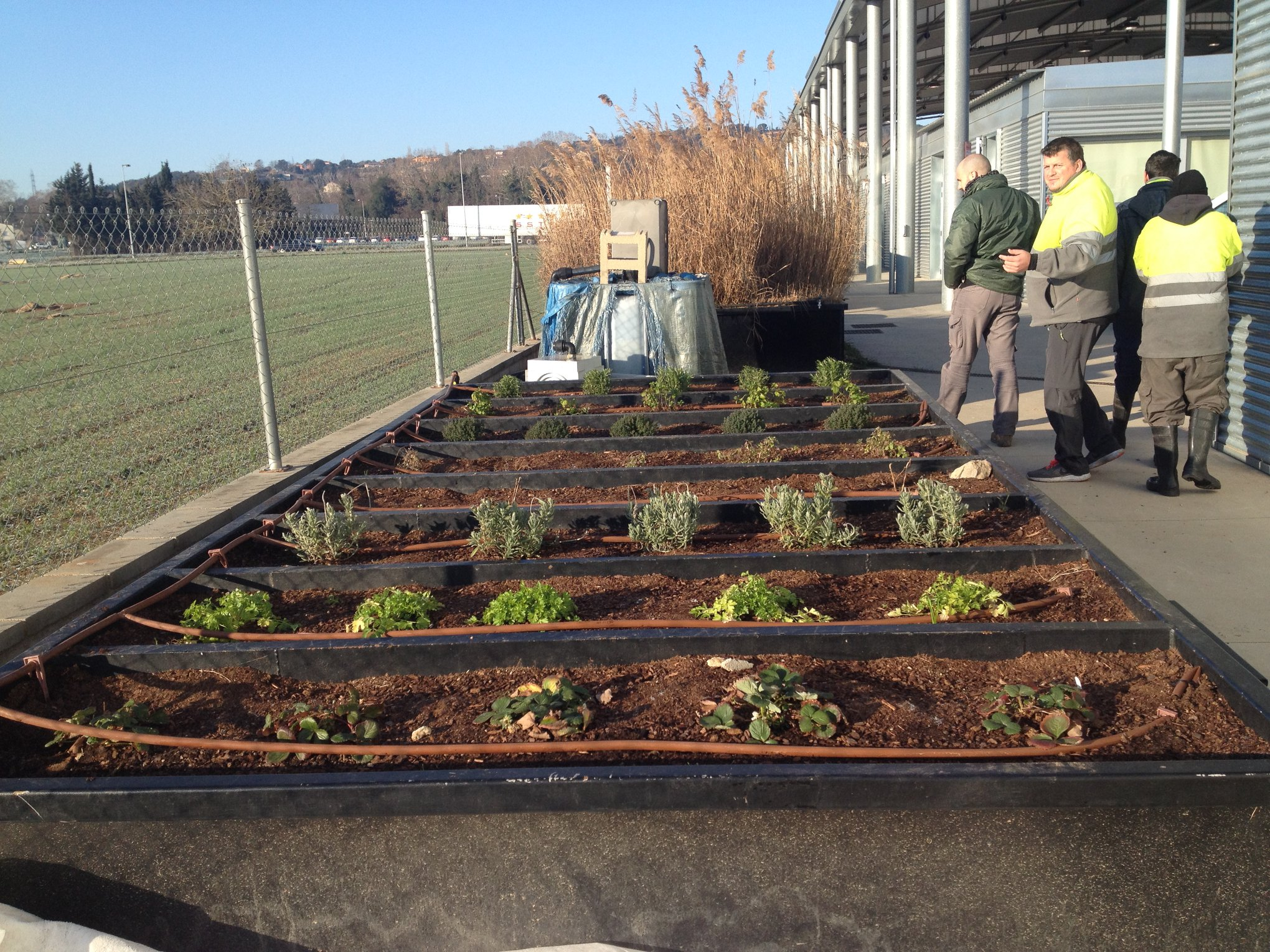 installation irrigation goutte goutte l 39 eau les herbes grup fundaci ramon noguera. Black Bedroom Furniture Sets. Home Design Ideas